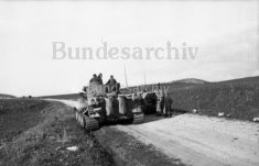 Tiger 131 heads for Beja
