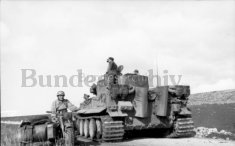 Tiger 142 heads for Beja