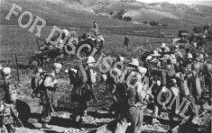 Soldiers and Pz.3 near Sidi N'sir