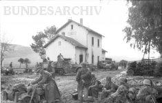 German vehicles at Sidi N'sir
