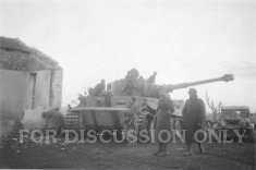 Thumbnail image: Tiger 122 by a ruined house