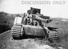 Tiger 200 wrecked