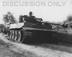 Thumbnail image: Tiger knocked out at Biazzo Ridge