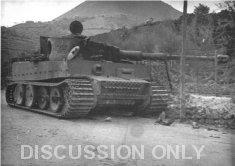 Thumbnail image: Tiger on Via Armando Diaz