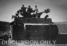 Children on Tiger 114