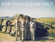 Thumbnail image: Tiger 121 in colour