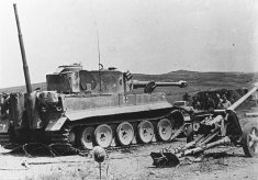 Tiger 131 and a Pak 40