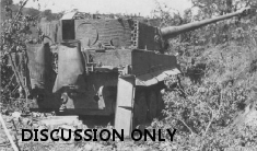 The wreck of Tiger 133
