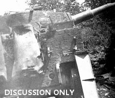 Details of Tiger 133