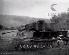 Tiger 334 wrecked