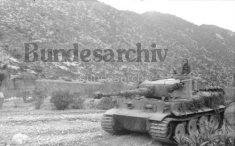 Operation Eilbote 1: Tiger 142 crosses Oued Maarouf