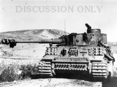 Tiger 231 knocked out