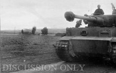 Tiger 112 travelling to Jedeida