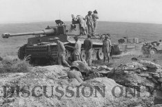 Tiger 131 is examined