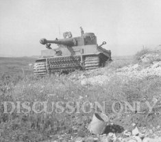 Tiger 131 on Point 174