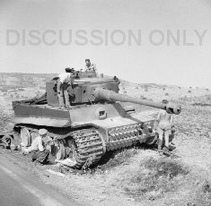 Tiger 211 burnt out