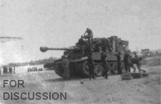 Tiger landed at Karouba