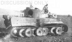 Tiger 114 decaying