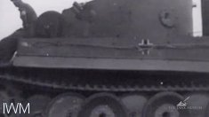 Tiger 131 is towed