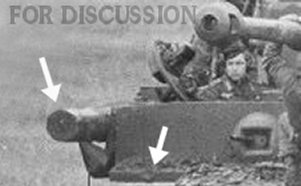 Tiger 121 with a log