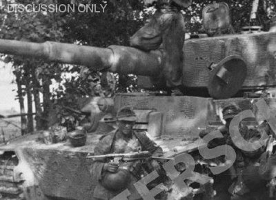 Camouflage paint on Tiger 217 of s.Pz.Abt. 502, 1944